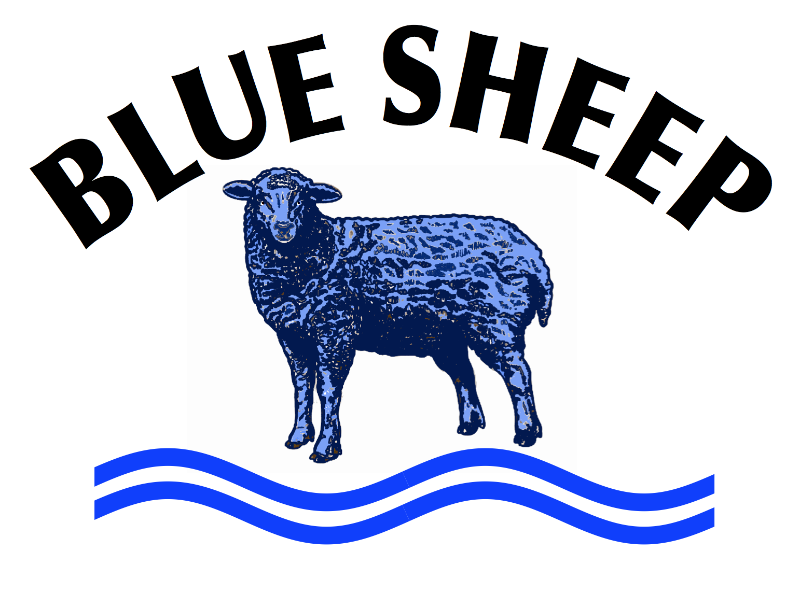 Blue sheep image
